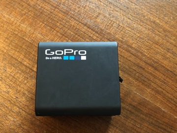 Rentals: GoPro Dual Battery Charger