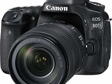 Rentals: Canon 80D + 18-156 F3.5
