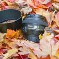 Rentals: Nikon AF-S NIKKOR 50mm f/1.4G