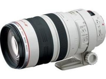 Rentals: Canon 100-400 IS Objektiv