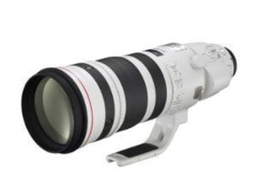 Rentals: Canon 200-400/4,0IS