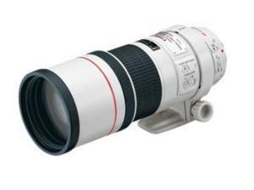 Rentals: Canon 4,0/300mm Objektiv