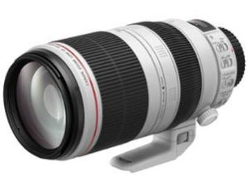 Rentals: Canon 4,5-5,6/ 100-400mm IS II