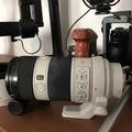 Rentals: Sony 70-200 F/4