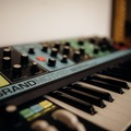 Rentals: Sequential Prophet-6/ Grand Mother Moog/ Roland TR-08 drum