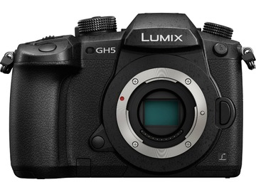 Rentals: Panasonic Lumix GH5 with 2 extra batteries and 2 SD Cards