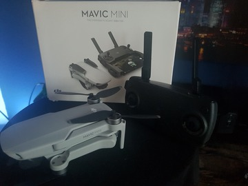 Rentals: DJI Mavic Mini
