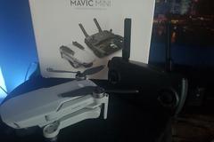 Rentals: DJI Mavic Mini