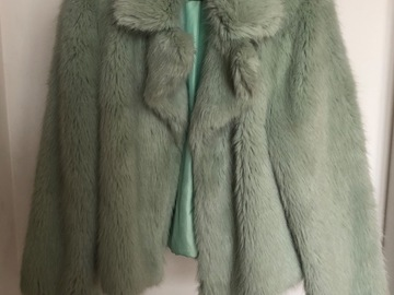 Rentals: Green Fur coat