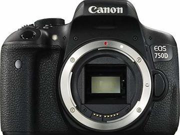 Rentals: Canon EOS 750D