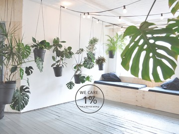 Studio/Spaces: LIANE 1 : urban jungle industrial space