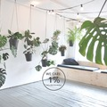 Studio/Spaces: LIANE 1 : urban jungle industrial space