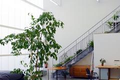 Studio/Spaces: Photo Studio in a creative Loft