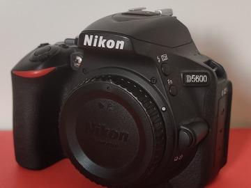 Rentals: Nikon D5600 + 18-55mm + 70-300mm