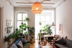 Studio/Spaces: Plant filled Altbau apartment