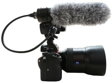 Rentals: Sony XLR-K2M