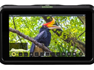 Rentals: Atomos Shinobi bundle