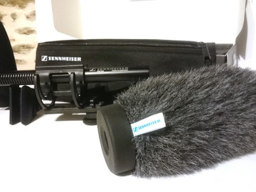 Rentals: Sennheiser MKE 600